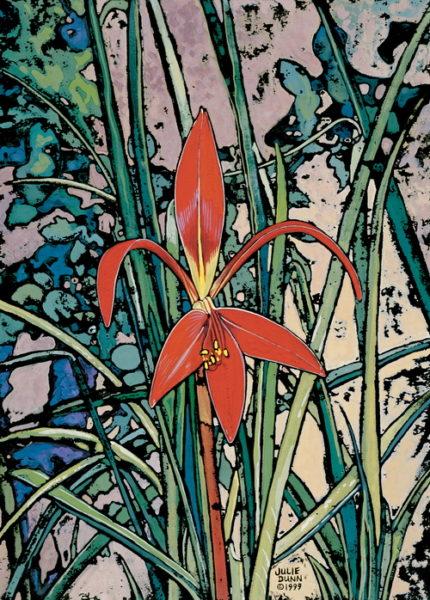 Aztec Lily