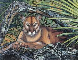 Samantha's Puma