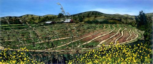 Serpentine Field